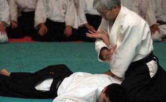 Imobilização Nikyo Doshu Aikido